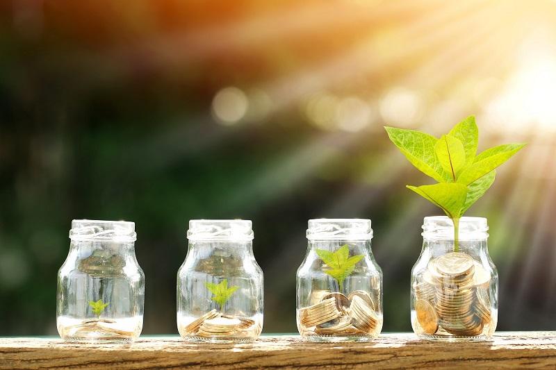 Ahorra con gas natural mientras cuidas del medio ambiente