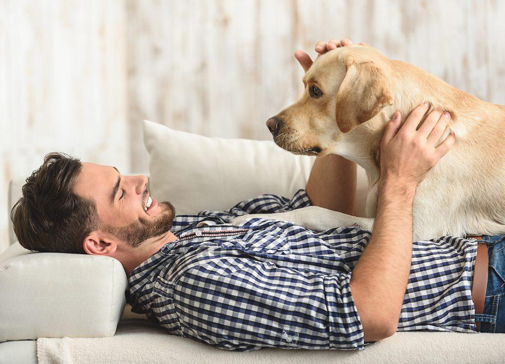 chico con su perro - confort en casa