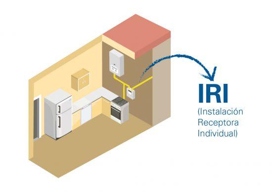 tipos-de-inspeccion IRI