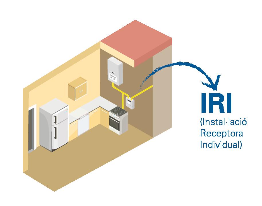 Inspecció de la instal·lació receptora individual