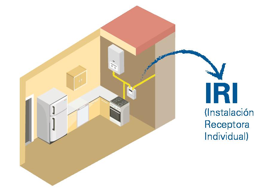 Inspección da instalación receptora individual