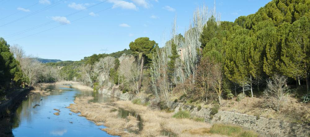 Contorna natural da central hidroeléctrica de Bolarque