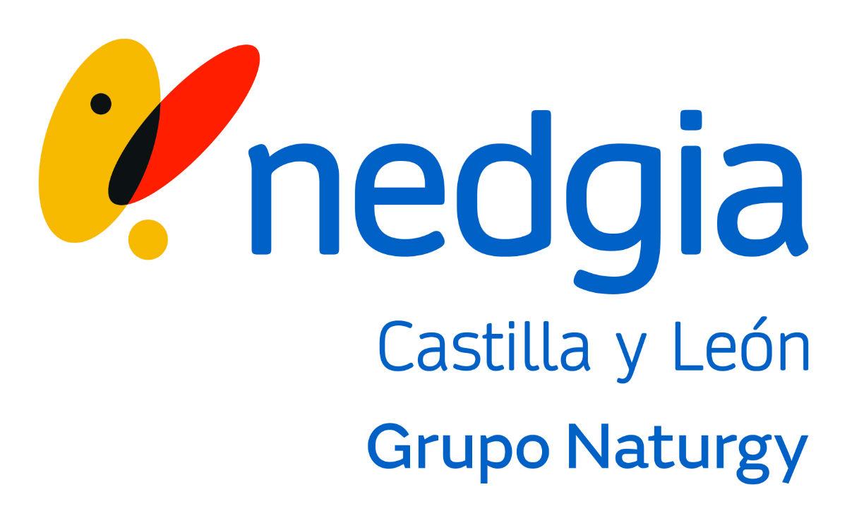 NEDGIA Castilla y León lleva el gas natural a Santa María del Páramo (León)