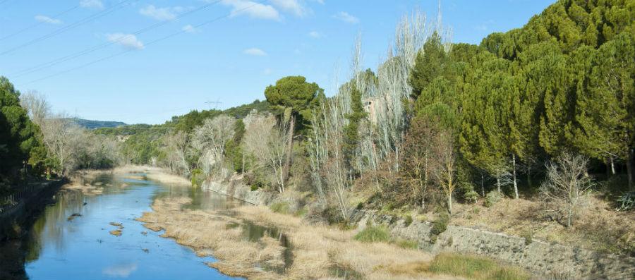 Entorno natural de la central hidroeléctrica de Bolarque