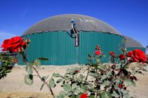 Balaguer farm renewable gas