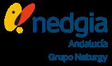 Nedgia Distribuidora Andalucía
