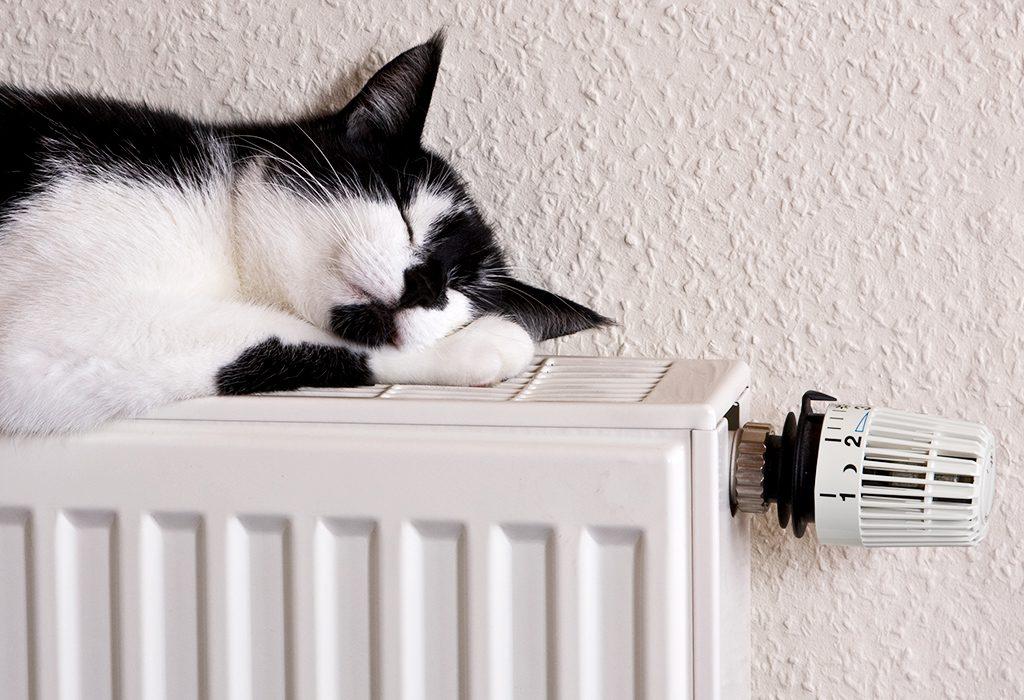 instaladores de gas natural en casa en cordoba